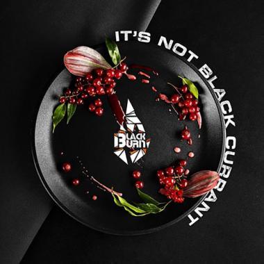 Табак Black Burn Its Not Black Currant (Красная Смородина) 100 гр