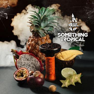 Табак Black Burn Something Tropical (Что то Тропическое) 100 гр